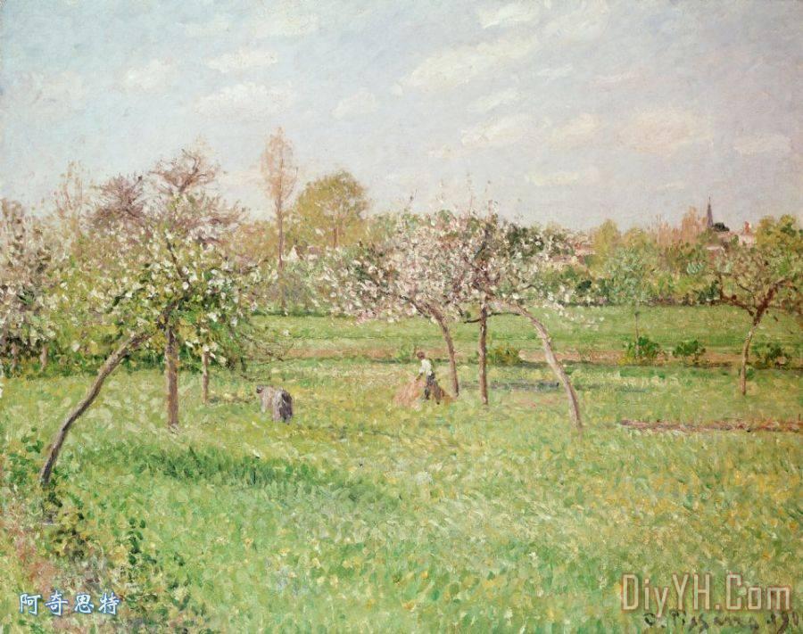 汕头市苹果树在gragny