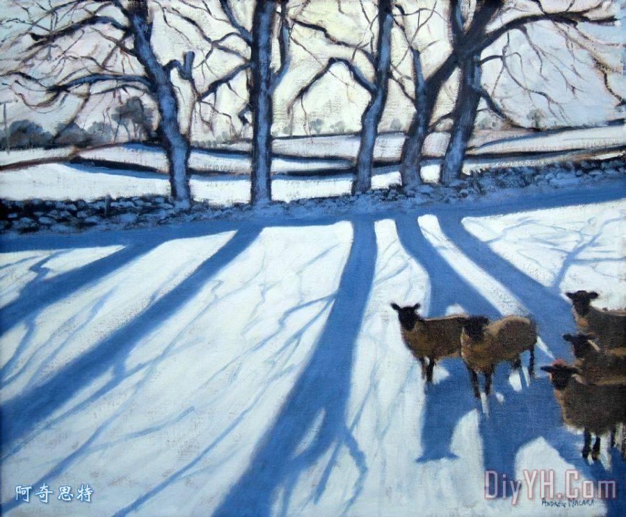 羊在雪地装饰画_风景_动物_村庄_田园的,乡下的_田野