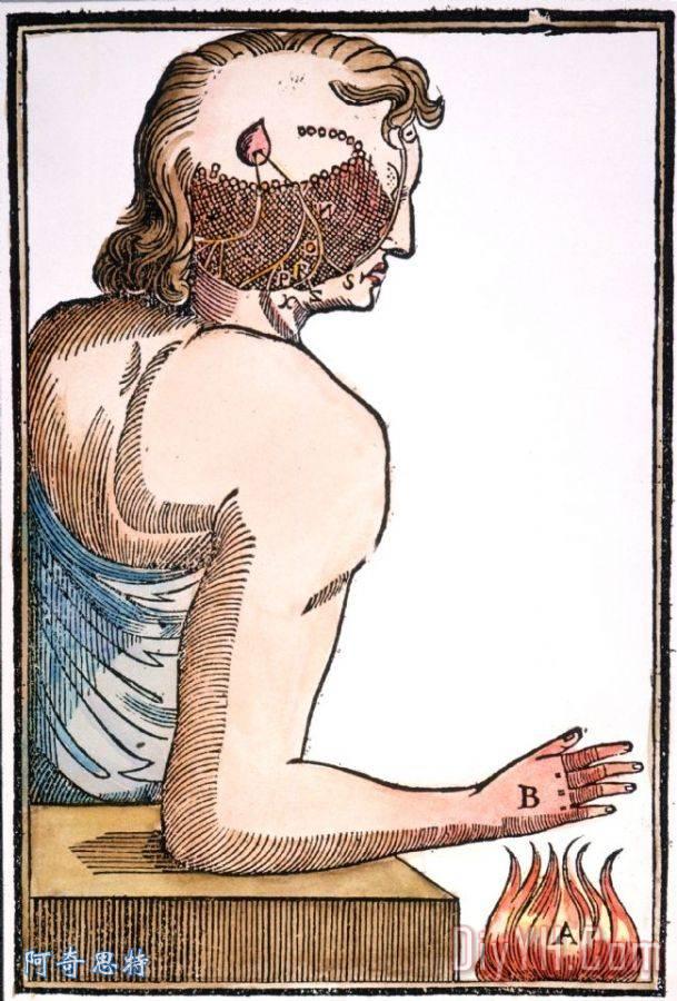 笛卡尔:反射, 1664图片