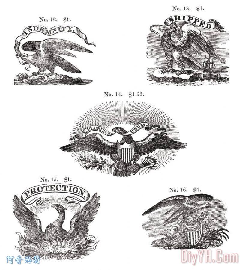 老鹰的手绘图片大全