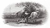 养殖, c1870装饰画