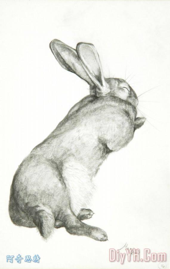 兔子睡觉装饰画_风景_动物