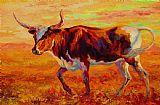 得克萨斯长角牛装饰画