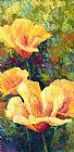 黄色的罂粟田装饰画