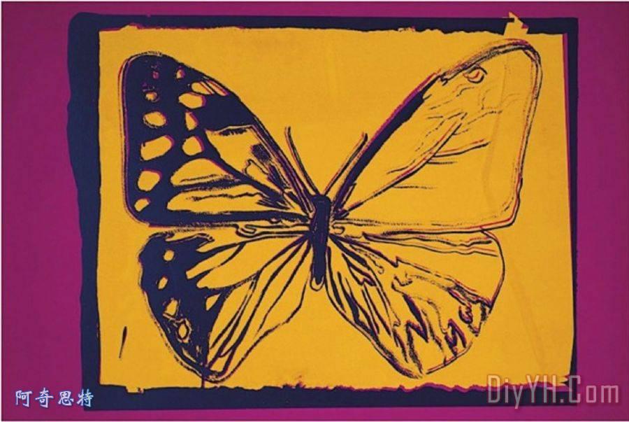 消失的动物蝴蝶? 1986黄色紫色