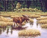 孤独的公牛装饰画