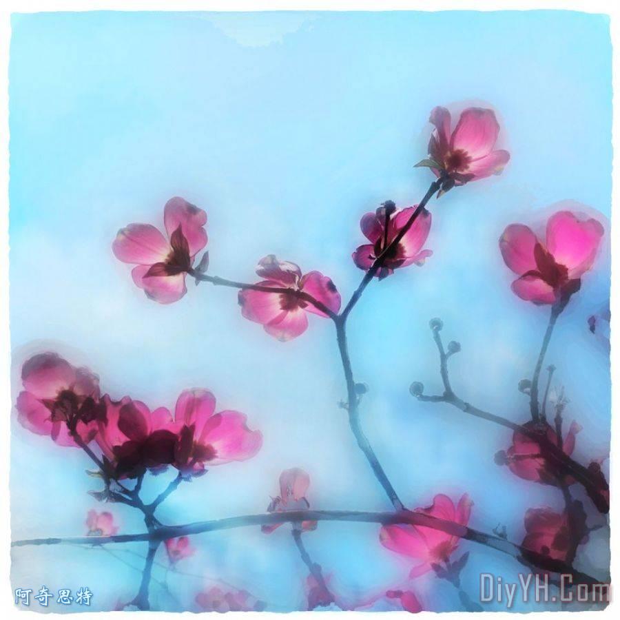 春天开花装饰画_风景_花卉