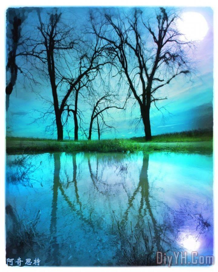 夜空装饰画_风景_树木_光秃秃的树木_望月_水中的倒影