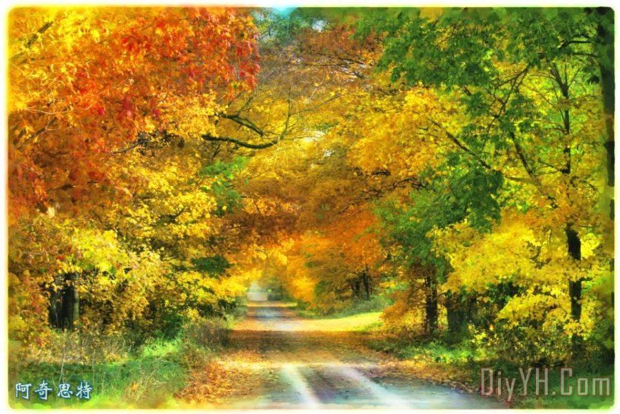 秋天的乡间小路上
