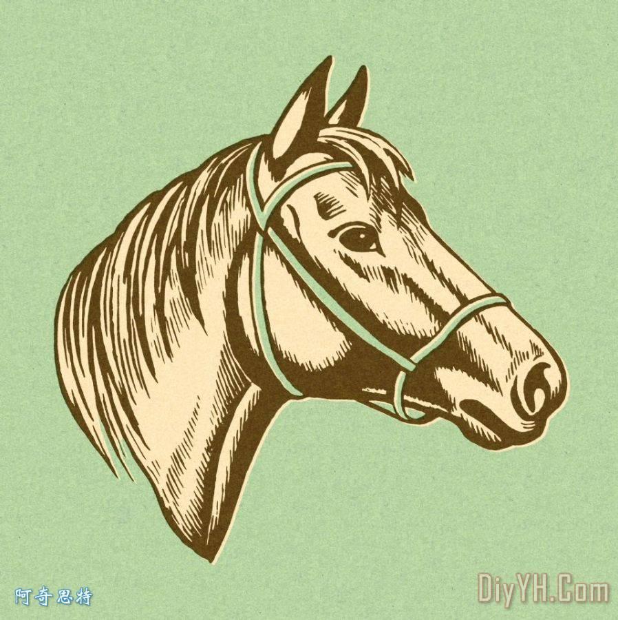 马头- 马头装饰画