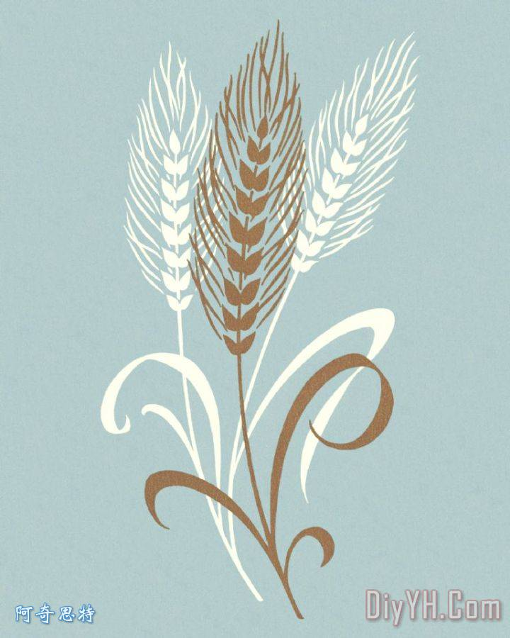 水粉风景画小麦