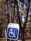 注册预留的残疾人专用停车位在日用野餐区装饰画