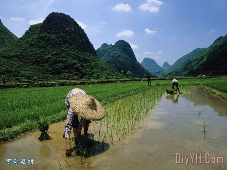 农村山水风景图画