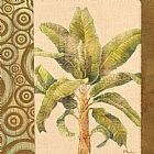 - 客厅棕榈树