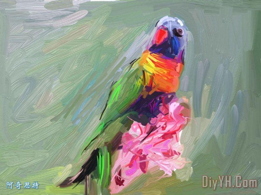 鹦鹉装饰画_人物_动物_儿童_印刷_鹦鹉油画定制