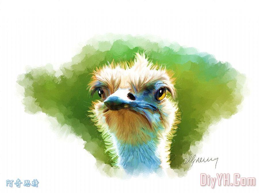 鸵鸟人像装饰画_动物_鸟类
