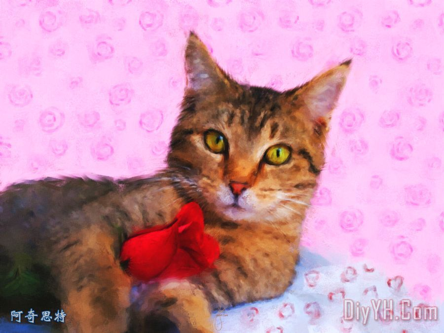 送你一朵玫瑰花装饰画 花卉 动物 红色 淡红色的 噩梦 送你一朵玫瑰花图片
