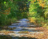 秋天的路径装饰画