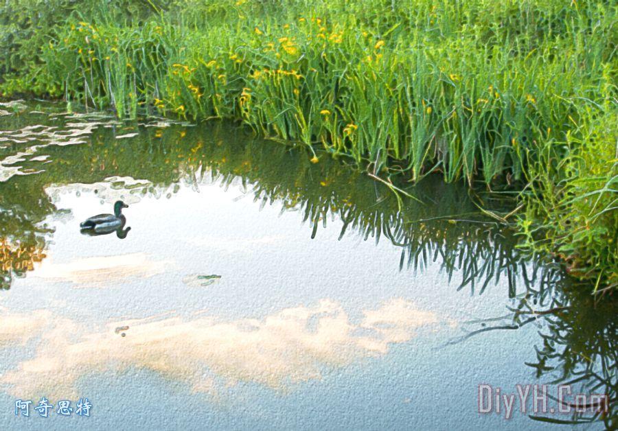 鸭子在湖装饰画_风景_村庄_森林_别墅_乡村_鸭子在湖