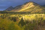 Wasatch山脉在秋季装饰画