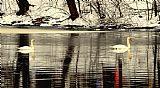 天鹅之歌装饰画