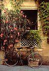 自行车和窗口法国阿尔勒装饰画