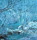 - 梧桐树和河