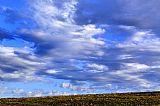 牧草场和天空装饰画