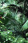 厄尔尼诺云雀国家森林装饰画