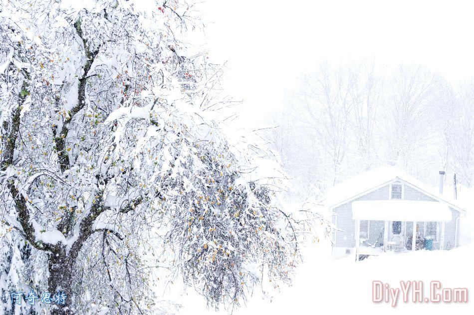 在下雪地区主页装饰画_风景_雪花_山_西弗吉尼亚州_在