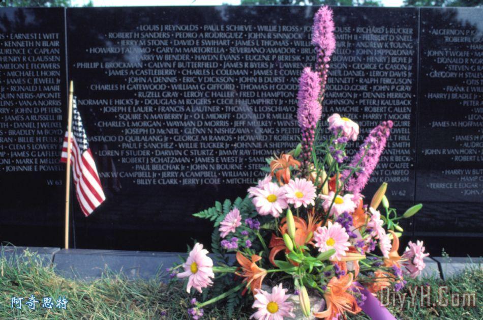 鄂州市越南退伍军人纪念阵亡将士纪念日
