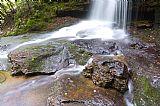 瀑布 - 瀑布莫农加希拉国家森林公园
