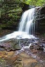 瀑布 - 西弗吉尼亚州瀑布