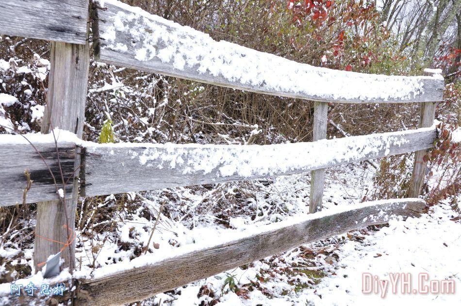 木栅栏与雪 - 木栅栏与雪装饰画
