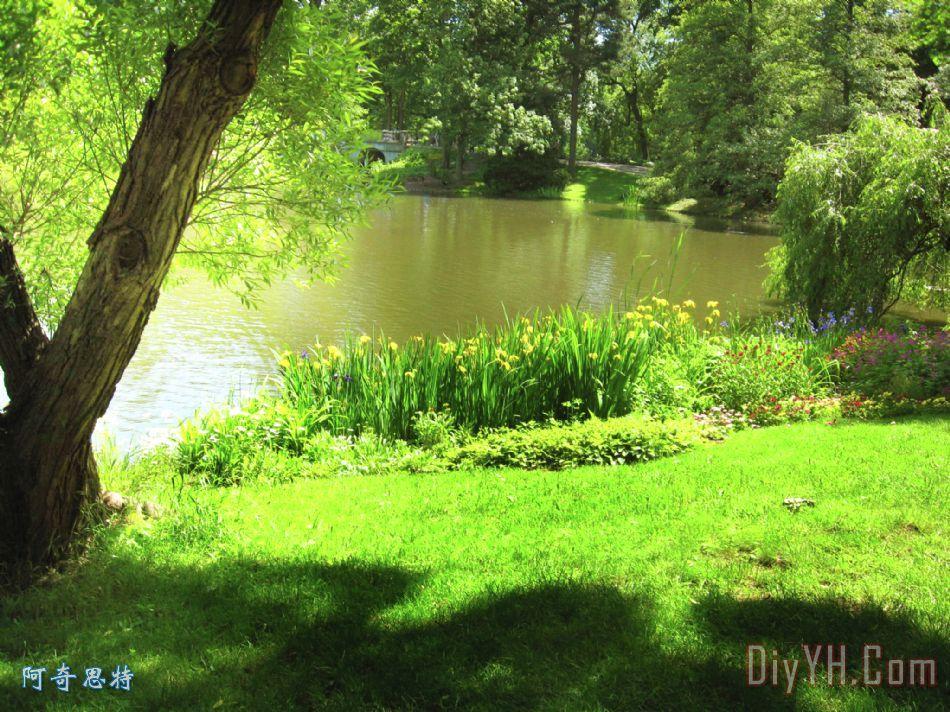 公园小径简笔画_春天大自然风景油画图片大全_春天大自然风景油画图片下载