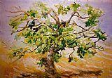 无花果树装饰画
