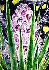 - 丝兰花植物西南艺术