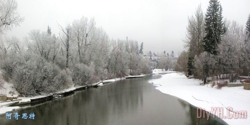 斯坦利公园 - 冬2装饰画_风景_冬天_霜冻_斯坦利公园