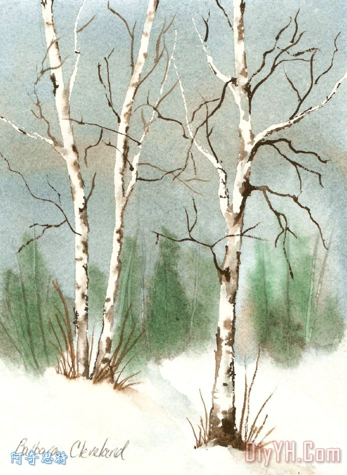 桦树- 桦树装饰画