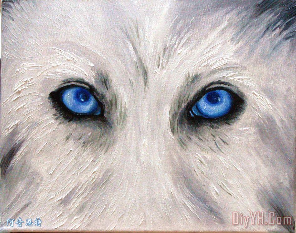 狼的眼睛装饰画_动物_肖像画_白色_蓝色的眼睛_狼的
