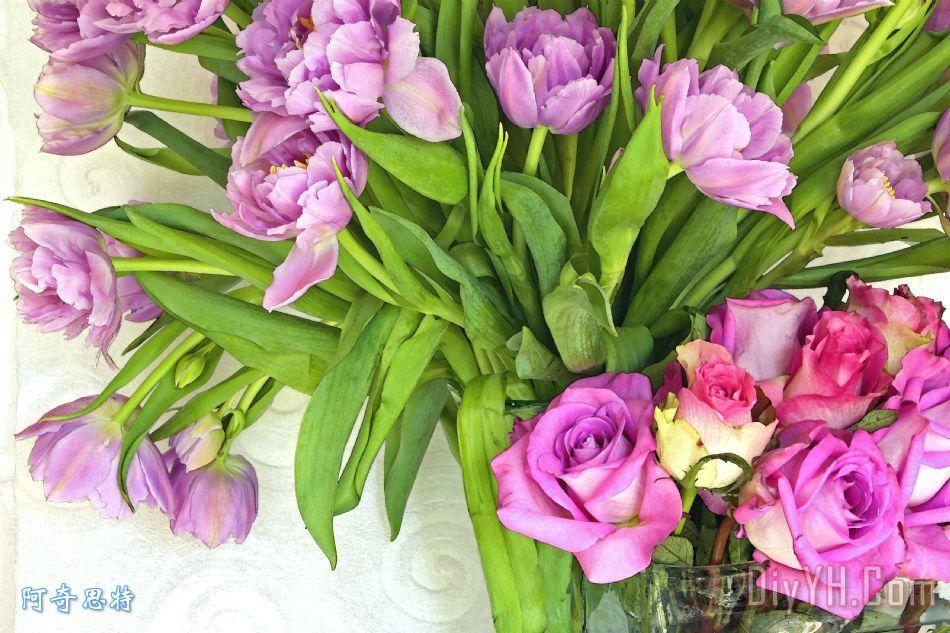 春天玫瑰和郁金香装饰画 风景 花卉 玫瑰花 春天玫瑰和郁金香油画定制 图片
