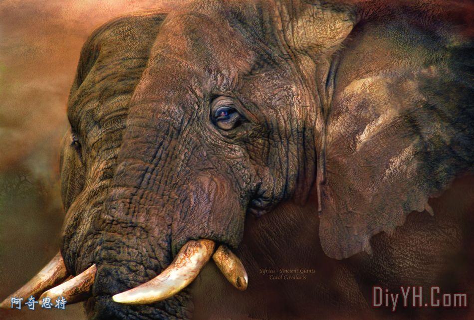 远古最厉害的动物