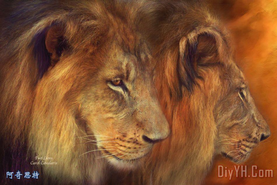 两个狮子装饰画_动物_两个狮子油画定制_阿奇思特