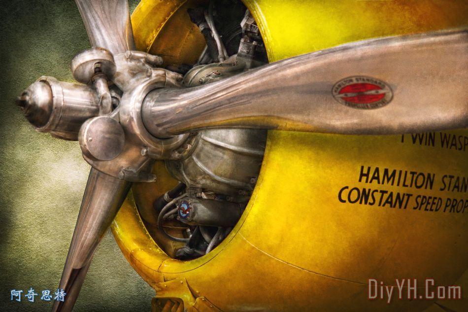 飞机飞行员螺旋桨双黄蜂装饰画