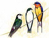 燕子静物装饰画