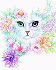 珍贵的小猫装饰画