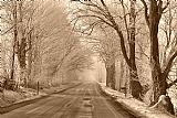 早上冰和雾装饰画