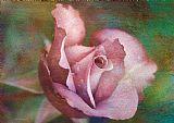 浪漫的玫瑰装饰画