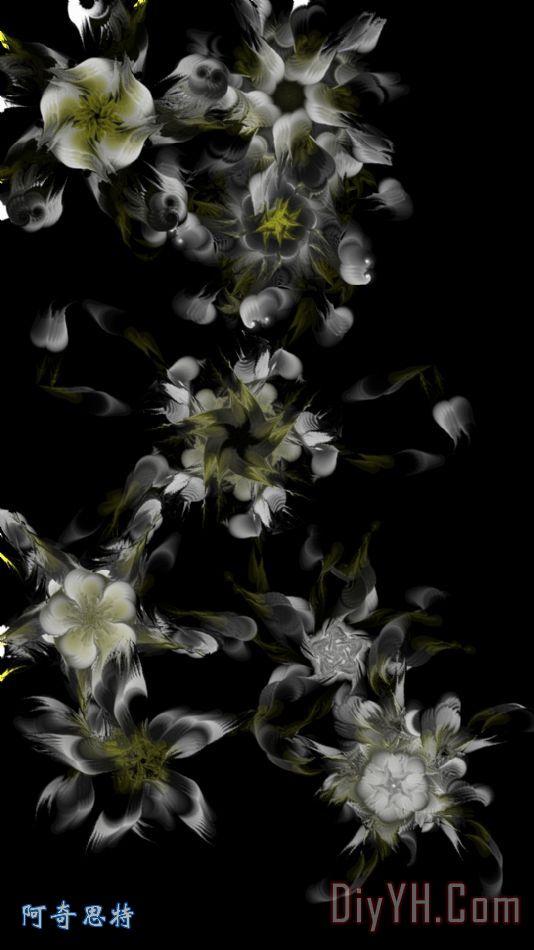分形花纹黑色 - 分形花纹黑色装饰画