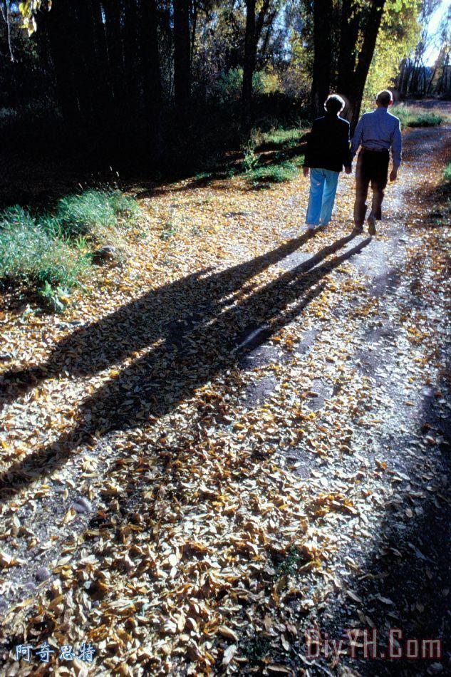 在秋季情侣散步装饰画_风景_人物_秋天_夫妻_女人__在